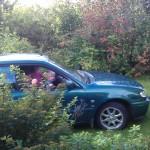 Toyota på safari i Biri