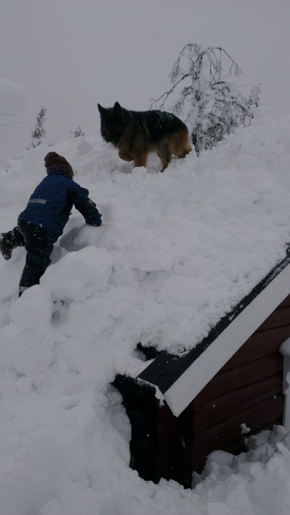 Silvio og guttungen leker på taket.