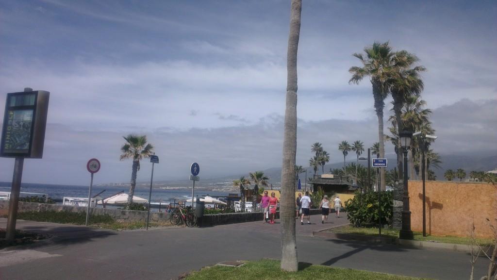 skyer og palme