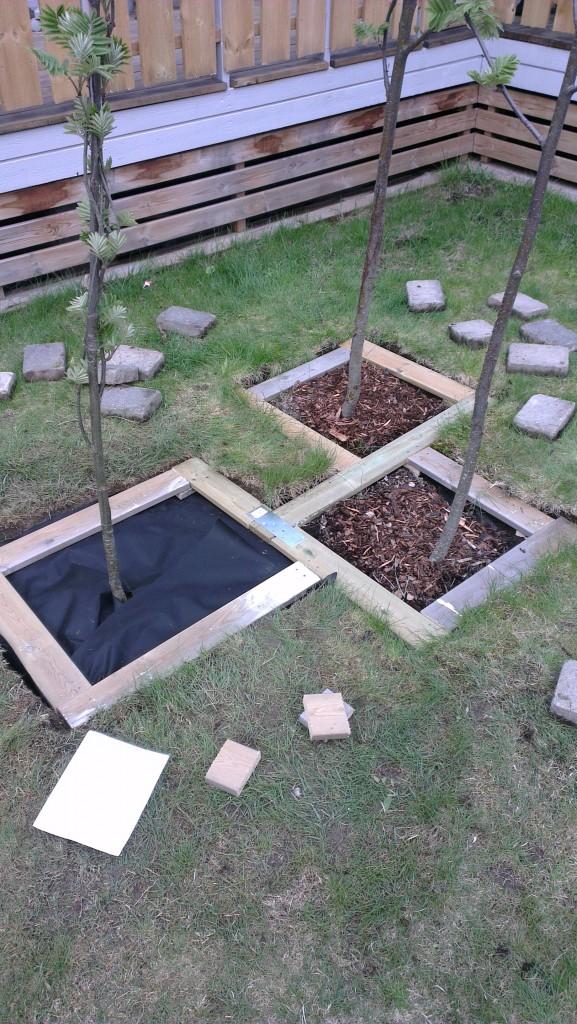 Stein rund trær i hagen