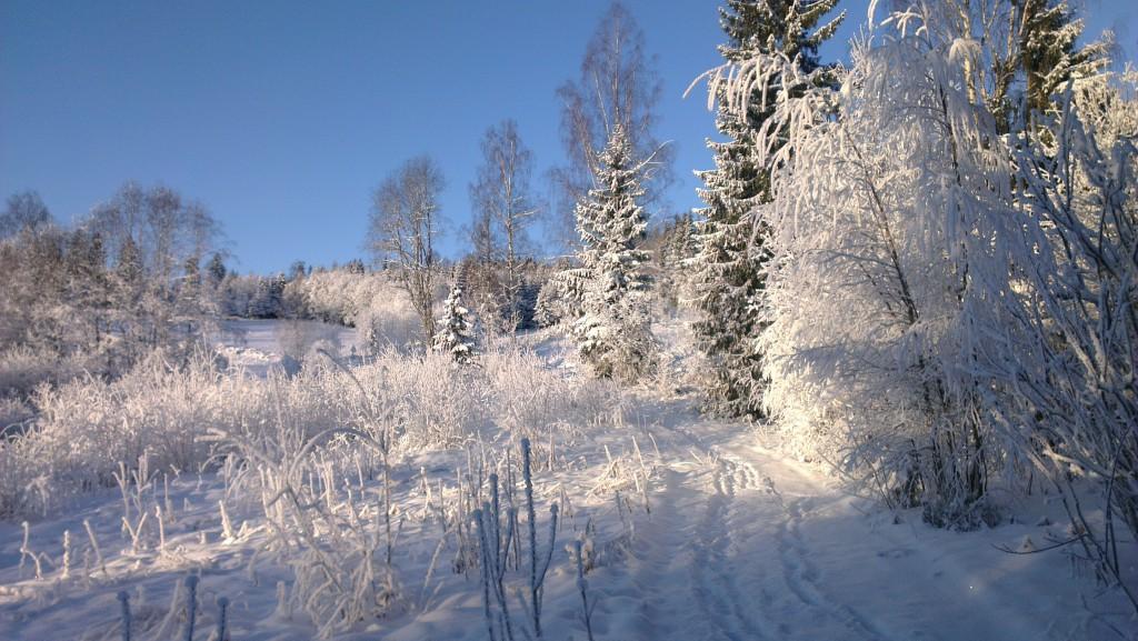 Snø og kulde