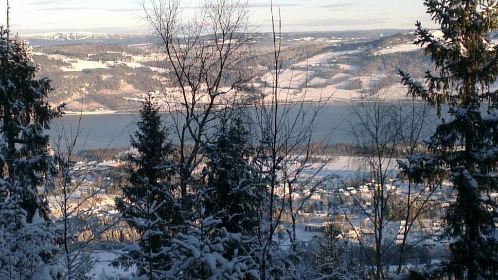 Mjøsa fra Brynstadberget