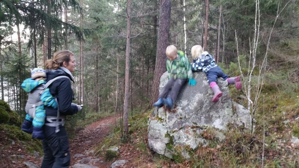 Ungene på en stein i Moskogen